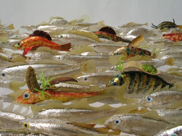 550 pesci fuor d'acqua particolare 2 005 copia
